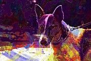 "New artwork for sale! - "" Jack Jack Russell Dog Animal Pet  by PixBreak Art "" - http://ift.tt/2vL8cIE"