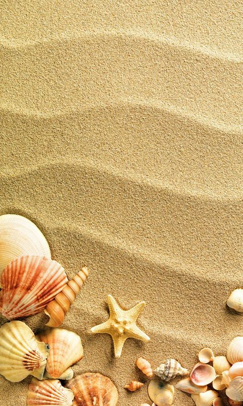 Starfish Sand Wallpaper For Android