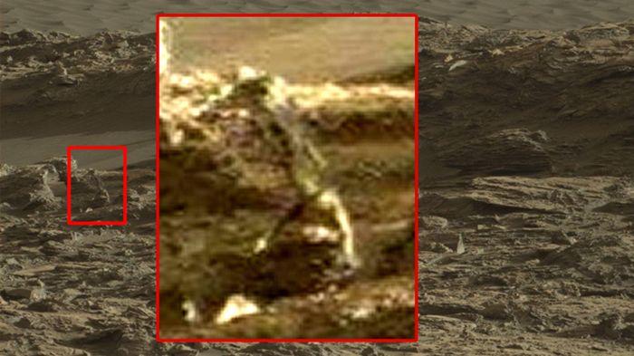 ¿Es esta la imagen de un Reptil vivo en Marte?       La gran aceptada teoría de la evolución de Charles Darwin nos explica como los anim...