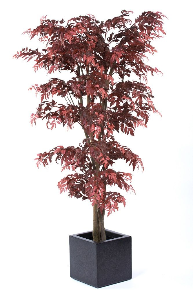 An amazing artificial tree, the Red Aralia, very similar to a Red Acer or Red Maple Tree.