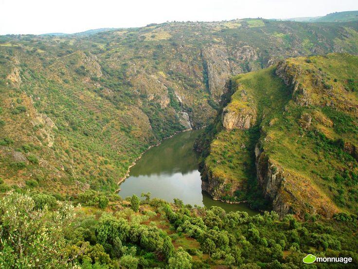 #Portugal, 15 endroits qu'il ne faut absolument pas rater - via Huffington Post 09.08.2015 | En effet le pays regorge de paysages à couper le souffle et possède également quelques monuments religieux et historiques incontournables que nous avons décidé de lister ici pour vous aider à ne rien manquer lors de votre découverte du Portugal. Photo: Parc Naturel du Douro