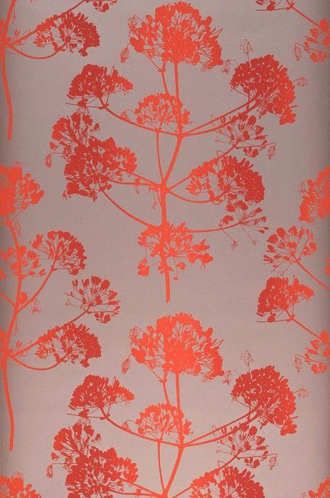 40 best papier peint images on Pinterest Wallpaper, Colors and Gray