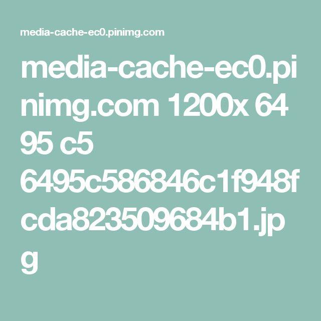 media-cache-ec0.pinimg.com 1200x 64 95 c5 6495c586846c1f948fcda823509684b1.jpg
