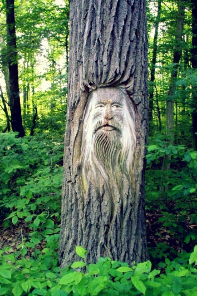 Elorie let's go carve faces into trees someday I'm down c: