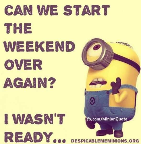 Can we start - Minion Quotes