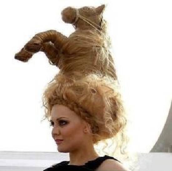 WEIRD FUN WOMAN'S HORSE HAIR STYLE
