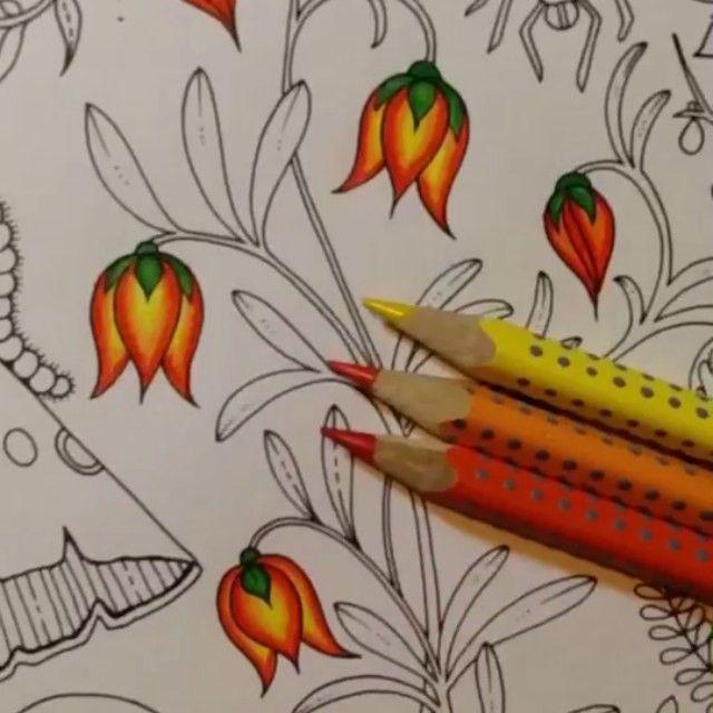 Boa noite pessoal!!!! #combinandocoresJSI de hoje são essas florzinhas lindas!  Comecei essa página do Floresta Encantada por essas florzinhas, e não resisti e do um vídeo!!! Espero que gostem pessoal! ✨ usei lápis de cor NÃO aquarelável! Essss são da linha Grip da Faber! ☺️❤️ Worth It --------------------------------------------------- #⃣ Use #jardimsecretoinspire para que seu colorido seja compartilhado aqui no nosso perfil!! ➡️ Envie por Direct também as suas fotos!! #jardimsecreto...