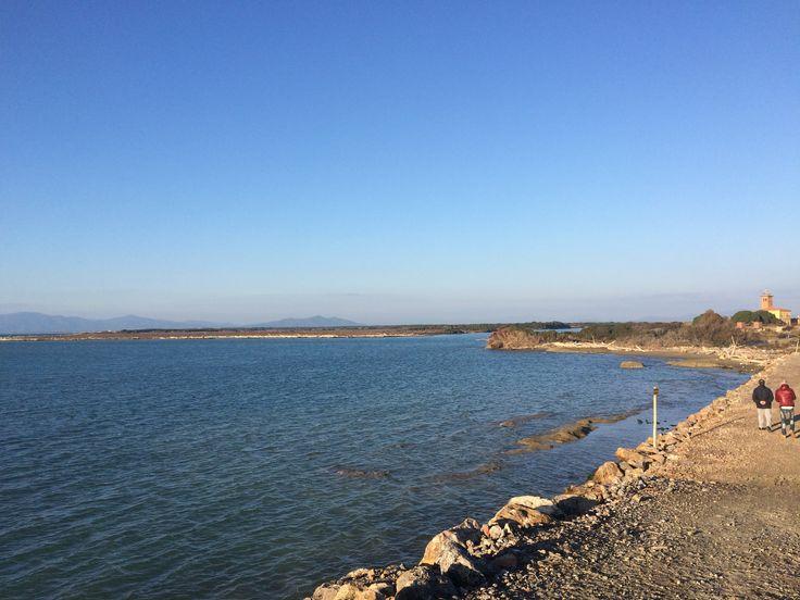 Foce del fiume Ombrone, itinerario A7