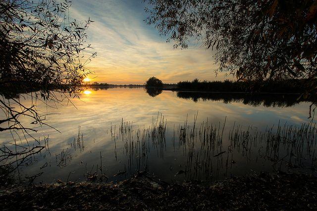 Milicz Ponds, Poland / Stawy Milickie | Flickr - Photo Sharing!