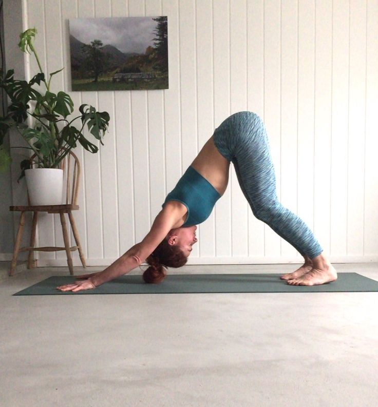 Adho Mukha Svanasana, Downward facing dog pose, Run & Relax, Signe Schineller, Yoga Signe, Yoga i Rosendal, Yoga med signe, MAnduka, Lumiyoga, ROsendal yoga, Signe Resignert