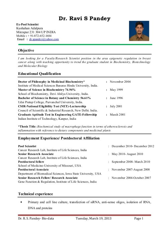 Cv Template Research Scientist Job Resume Samples Teacher