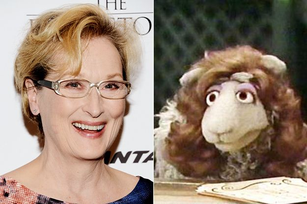 Meryl Streep has a muppet named after her called Meryl Sheep & other things you didn't know about celebs