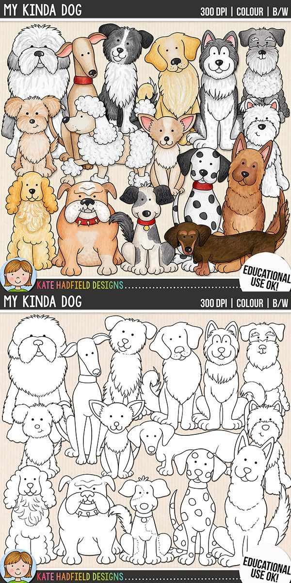 Dog clip art for teachers! Contains coloured clipart + black and white outlines all at 300 dpi for highest quality printing for your projects and resources! Hand-drawn clip art by Kate Hadfield Designs at Teachers Pay Teachers
