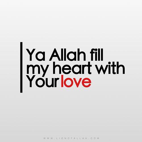 Allah'ım kalbimi senin sevginle doldur 😍