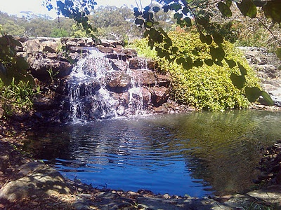 Coffs Harbour Botanic Garden. Been here and loved it!