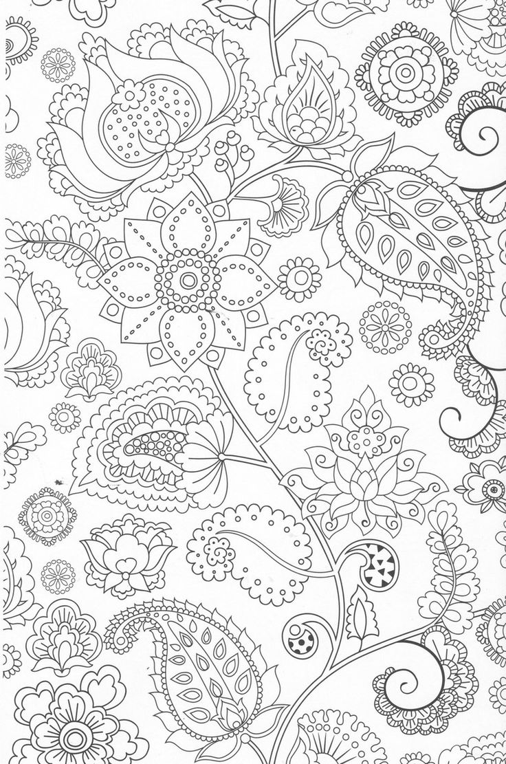 1875 best flowers coloring images on pinterest coloring books