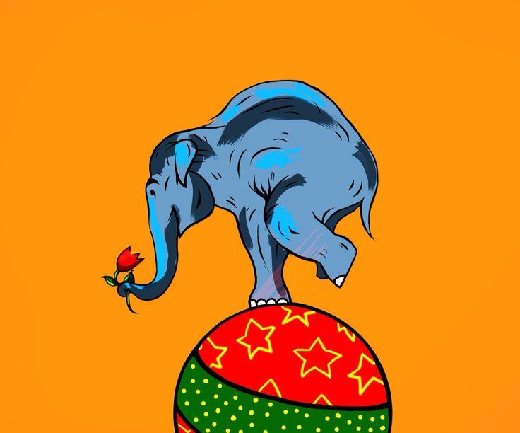 Слон в цирке на шаре