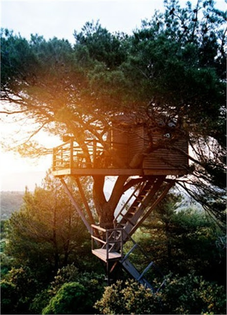 The world's 15 most Stunning Tree Houses.