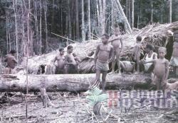 Papoea's bij het bivak Kloofkamp, 1959