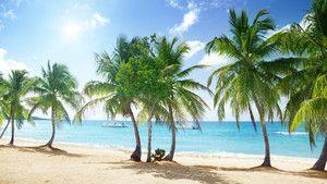 Dominikanska Republiken har fantastiska sandstränder.