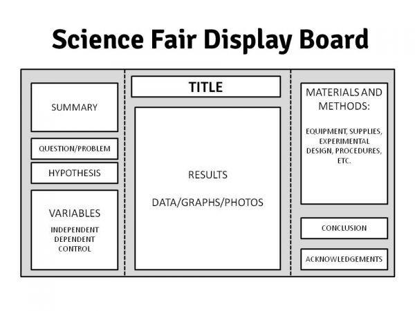 Best 25+ Science fair display board ideas on Pinterest