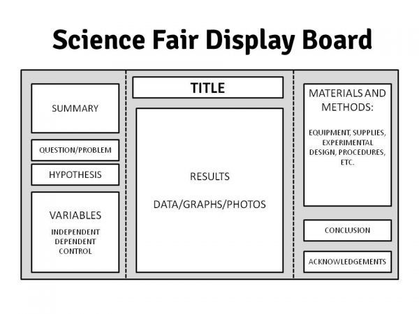 Science Fair Display Board on Pinterest | Science fair board, Science ...