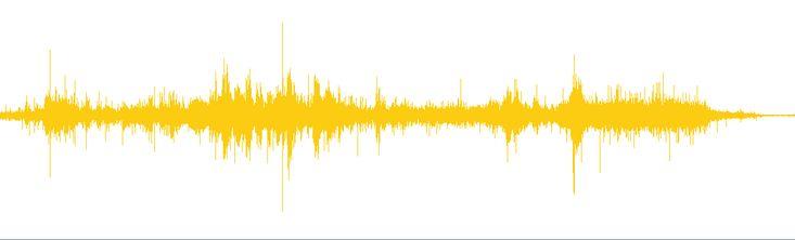 Beast or Bear Growl - Free Sound