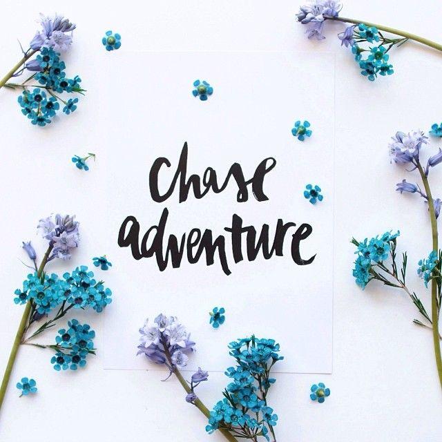 Chase Adventure