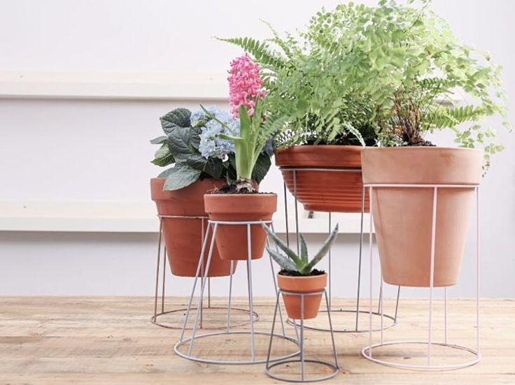 Du bist auf der Suche nach einer neuen Art von Pflanzentreppe? Wir haben da etwas für Dich! Alte Gestelle eignen sich großartig zum Upcyclen. Marie von DaWanda zeigt Dir, wie Du aus Lampenschirmen tolle Halterungen für Deine Pflanzen in verschiedenen Höhen bauen kannst.
