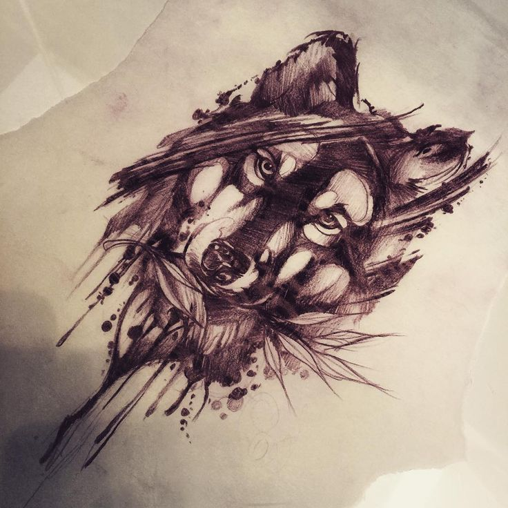 Watercolor Color And Sketch Tattoo: Best 25+ Watercolor Wolf Tattoo Ideas On Pinterest