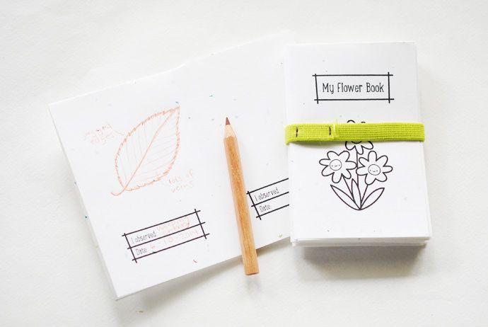 Libretas de observación de la naturaleza (imprimible gratis) - Nature observation books (free printable) • Montessori en Casa