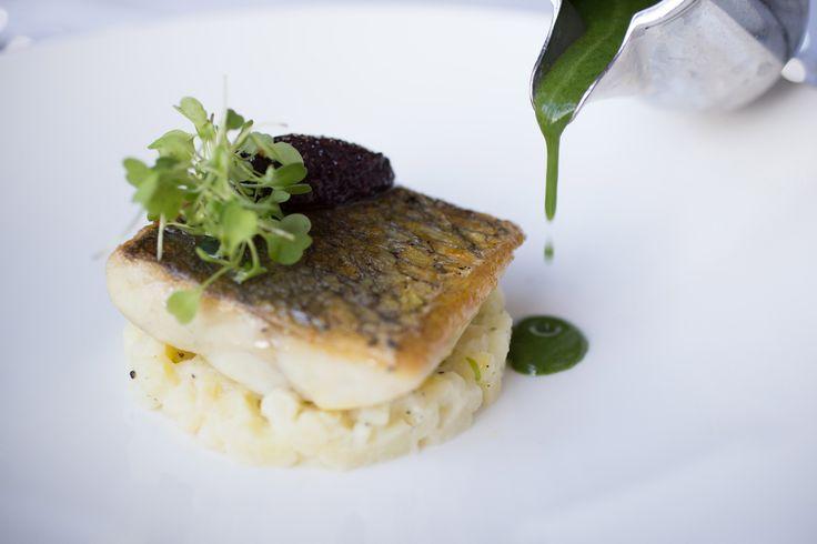 Fillet of Stone Bass - Catalina Restaurant @lougherneresort @noelmcmeel