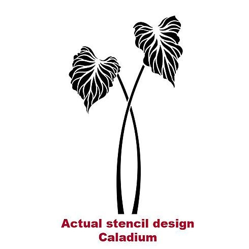 36 Best Images About Stencils On Pinterest Diy Wall
