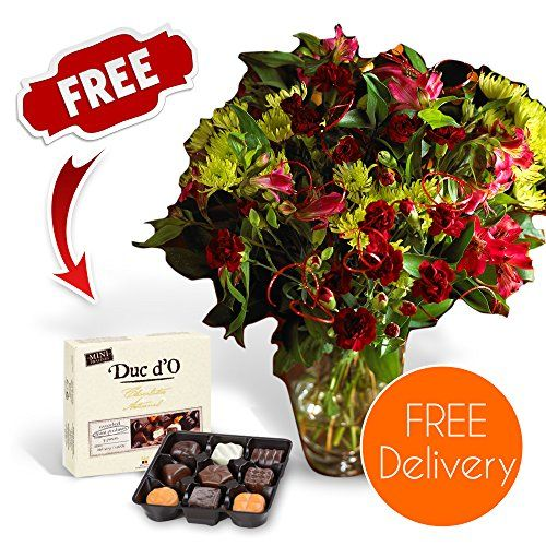 SendaBunch Fresh Christmas Flowers Delivered - Free UK Delivery - Burgundy Blizzard Bouquet including Chrysanth No description http://www.comparestoreprices.co.uk/december-2016-3/sendabunch-fresh-christmas-flowers-delivered--free-uk-delivery--burgundy-blizzard-bouquet-including-chrysanth.asp