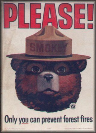 "Smoky the Bear saying, ""Only you can prevent forest fires!"" He needs to be really visible again..."