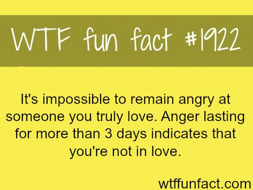 Being angry on loved one -WTF fun facts