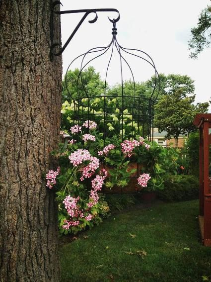 156 Best Bird Cages In The Garden Images On Pinterest | Birdcage Decor,  Gardening And Pots
