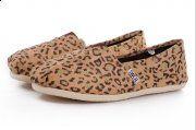 Hollow Lace Women Shoe : Discount Toms Shoes for Sale