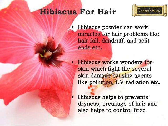 10 Benefits Of Hibiscus Flower Hair Remedies Chhayaonline Ready Food For Daily Recipes In 2020 Vitamins For Hair Growth Hair Remedies Hibiscus