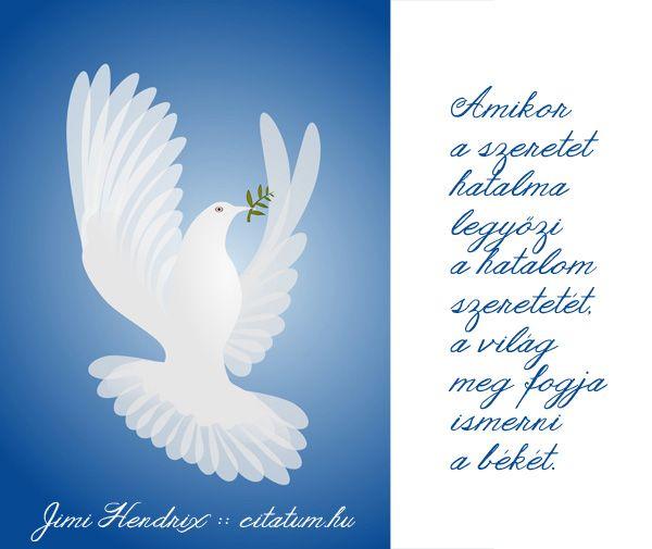 jimmy hendrix idézetek Jimi Hendrix #idézet | Bölcsességek | Jimi hendrix, Quotes e Birds
