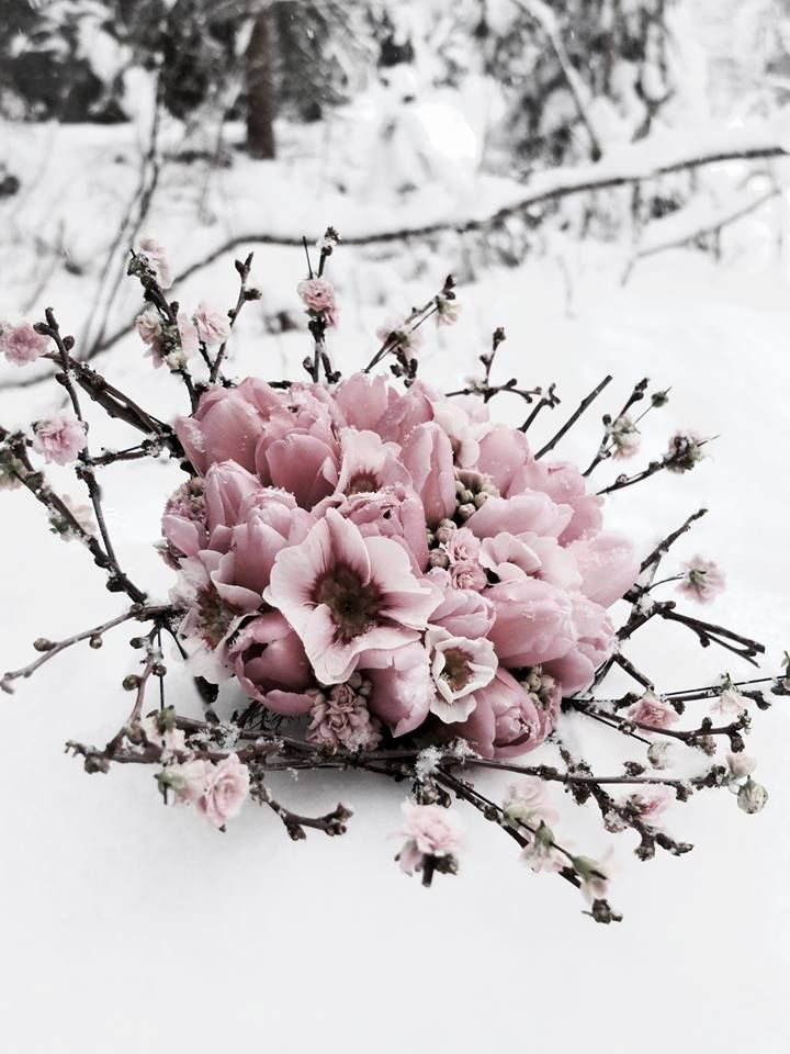 Fleur Miriam Bourgoin