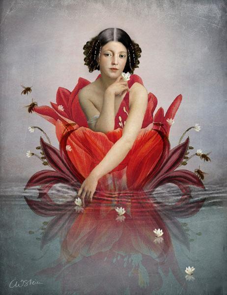 Catrin Welz-Stein - Schwimmende Blume