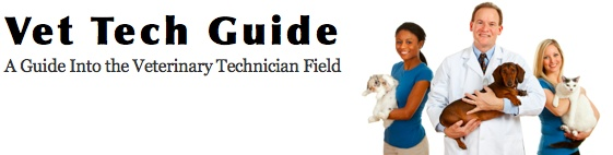 Vet Tech Programs And Schools In Idaho #veterinary_technician #popular_jobs #a_day_in_the_life