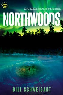 A Bookaholic Swede: Northwoods by Bill Schweigart