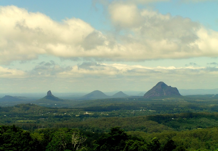 Maleny, Queensland Beautiful Rainforest Walks