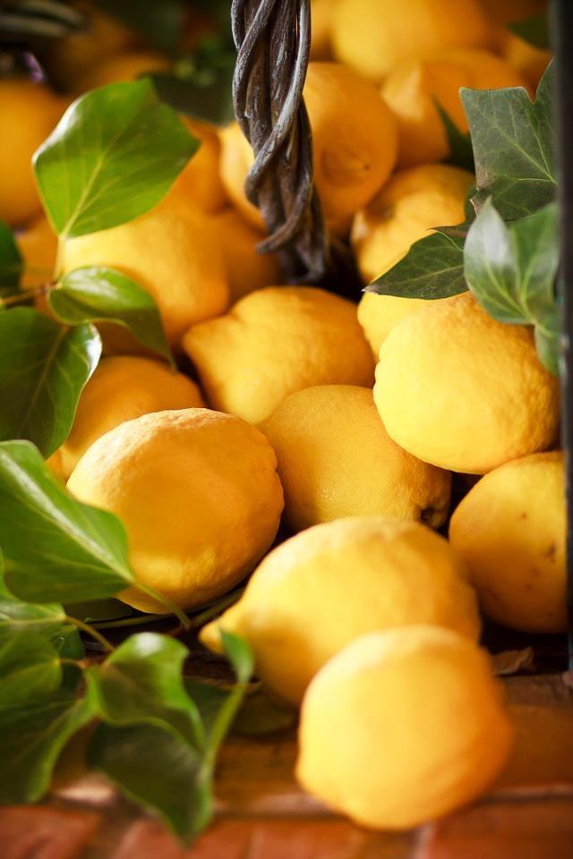 Limones de nuestra finca, Murcia