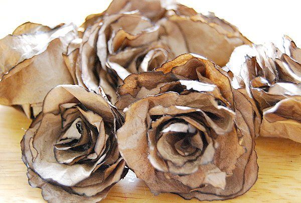 Beautiful Brown Bag Roses - CreativeMeInspiredYou.com