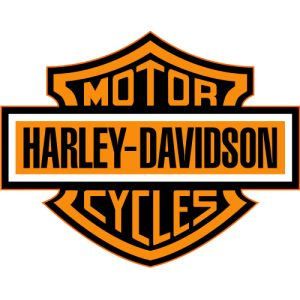 the 25 best harley davidson fabric ideas on pinterest harley boots rocker boots and harley t. Black Bedroom Furniture Sets. Home Design Ideas