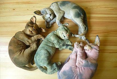 Котики Елены Акуловой