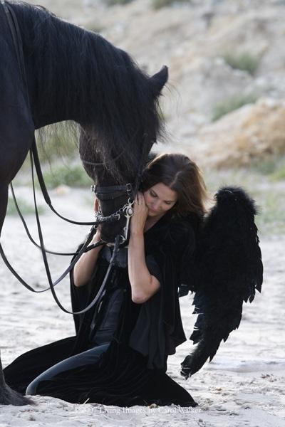 """""""fallen angel"""" with Friesian gelding, in Ojai, CA, by Carol Walker"""
